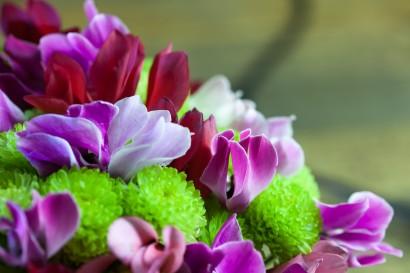 bouquets-de-voeux-018.jpg